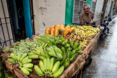 Street Produce Cart in Havana Cuba