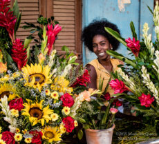 Flowers for Sale in Havana Cuba